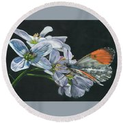 Orange Tip  Round Beach Towel