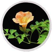Orange Trumpet Flower Round Beach Towel