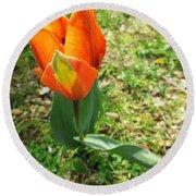 Orange Tulip On Verona Round Beach Towel