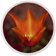 Round Beach Towel featuring the photograph Orange Tulip by Richard Cummings