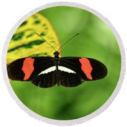 Orange, White And Black Butterfly  Round Beach Towel