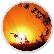 Orange Wonder Round Beach Towel