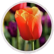 Orange Tulip Square Round Beach Towel