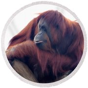 Orangutan - Color Version Round Beach Towel by Lana Trussell
