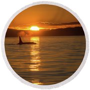 Orca Sunset Round Beach Towel