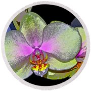 Orchid 2 Round Beach Towel by Pamela Cooper
