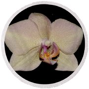 Orchid 2016 2 Round Beach Towel
