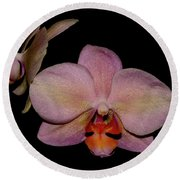 Orchid 2016 3 Round Beach Towel