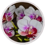 Orchid 306 Round Beach Towel