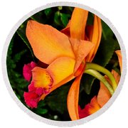 Orchid 355 Round Beach Towel