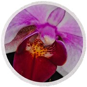 Orchid 376 Round Beach Towel