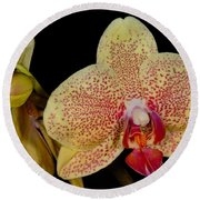 Orchid 377 Round Beach Towel