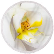 Orchid 4 Round Beach Towel
