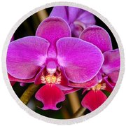 Orchid 422 Round Beach Towel