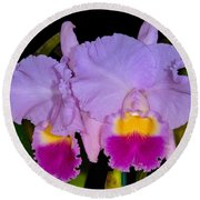 Orchid 428 Round Beach Towel