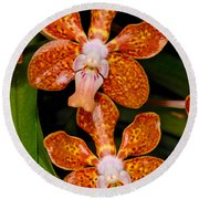 Orchid 450 Round Beach Towel