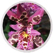 Round Beach Towel featuring the photograph Orchid Beauty by Jasna Gopic