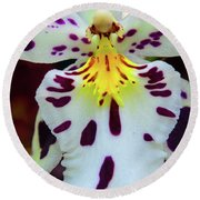 Orchid Cross Round Beach Towel