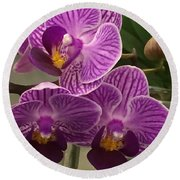 Orchid Delight Round Beach Towel
