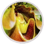 Orchid Faces Round Beach Towel