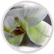 Orchid For Valentines Day Round Beach Towel