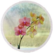Orchid In Portrait Round Beach Towel