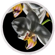 Orchid On Fire Round Beach Towel
