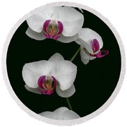 Orchid Sequence  Round Beach Towel