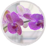 Orchid Spray Round Beach Towel