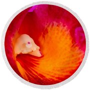 Orchid Vortex 458 Round Beach Towel