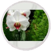 Orchid White Round Beach Towel by Brian Jones