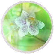 Orchid2 Round Beach Towel