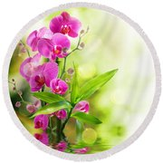 Orchidaceae Round Beach Towel by Thomas M Pikolin