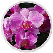Orchids 4 Round Beach Towel