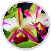 Orchids In Color Round Beach Towel