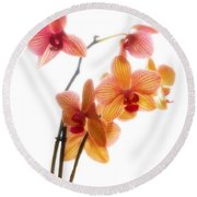 Orchids Round Beach Towel by Mark Alder