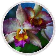 Orchids - Trio Round Beach Towel