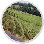 Oregon Vineyard Round Beach Towel