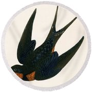 Oriental Chimney Swallow Round Beach Towel by English School