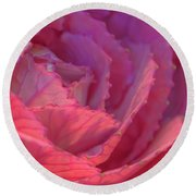 Round Beach Towel featuring the photograph Ornamental Pink by Roy McPeak