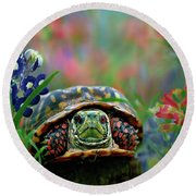 Ornate Box Turtle Round Beach Towel