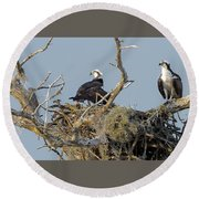 Round Beach Towel featuring the photograph Osprey Family by Norman Peay