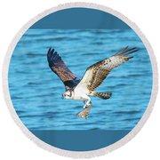 Osprey Fishing Success Round Beach Towel by Jeff at JSJ Photography