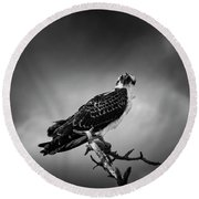 Round Beach Towel featuring the photograph Osprey In Black And White by Chrystal Mimbs