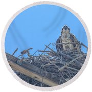 Osprey Nest Round Beach Towel by Billie-Jo Miller