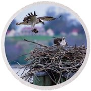 Osprey Nest Building Round Beach Towel