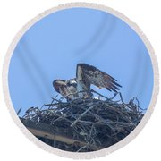 Osprey Nest II Round Beach Towel by Billie-Jo Miller