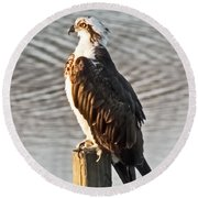 Osprey On Post Round Beach Towel