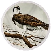 Osprey Sea Hawk Round Beach Towel by James Williamson