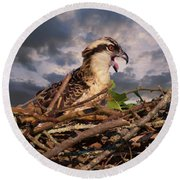 Osprey Talk Round Beach Towel
